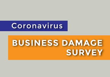 Coronavirus Business Survey